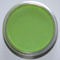 Color Acrylic Dino Green, 2gm